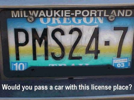 Funny Picture - A Woman's License Plate
