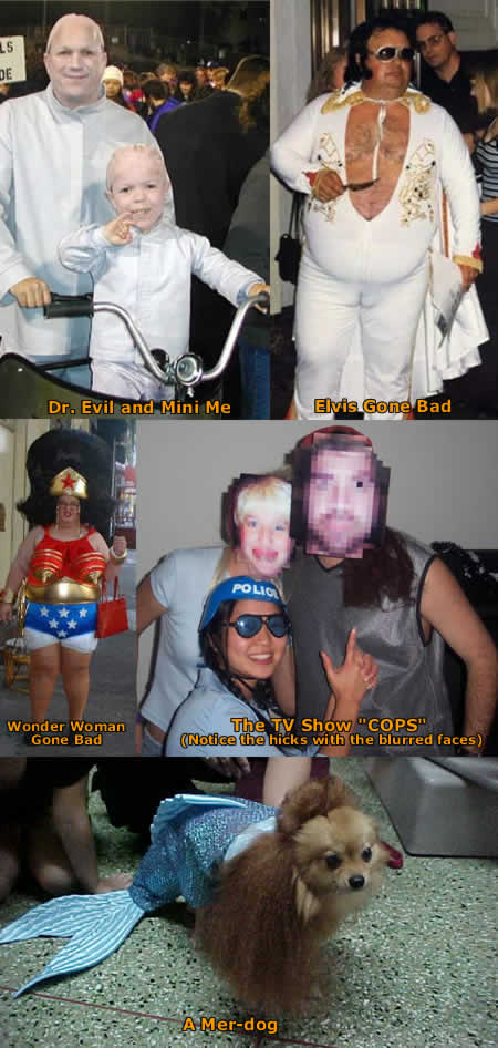 Funny Picture - More Funny Halloween Costumes