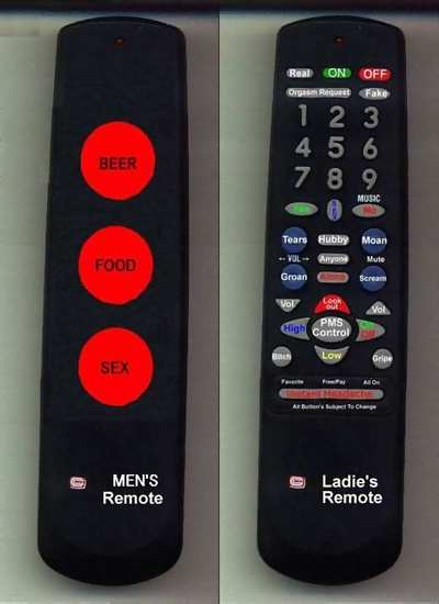 Funny Picture - Male and Female Remotes