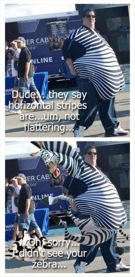 Funny Picture - Zebra Stripes