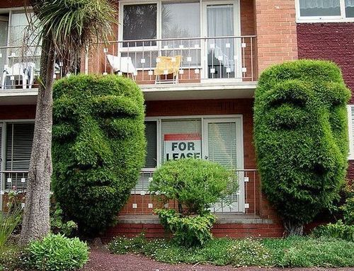 Funny Picture - Creepy Bushes