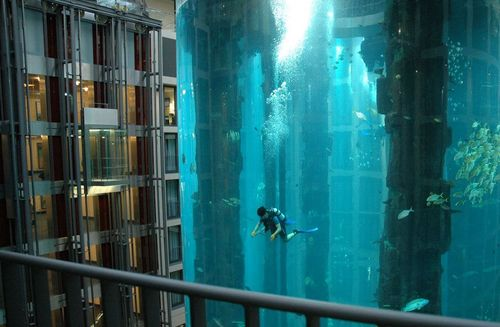 Funny Picture - Diving On A Cruise Ship
